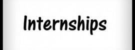 mini-internship
