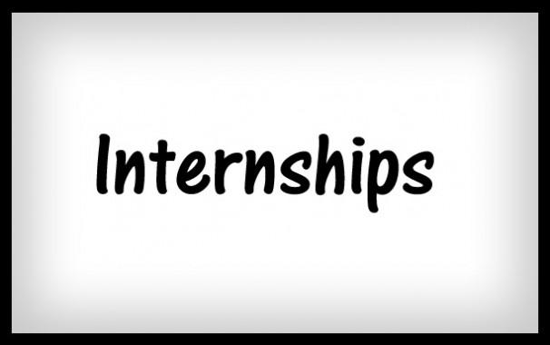 4 Ways to Jump Into a Mini-Internship