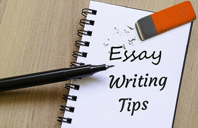 tips for writing a professional essay